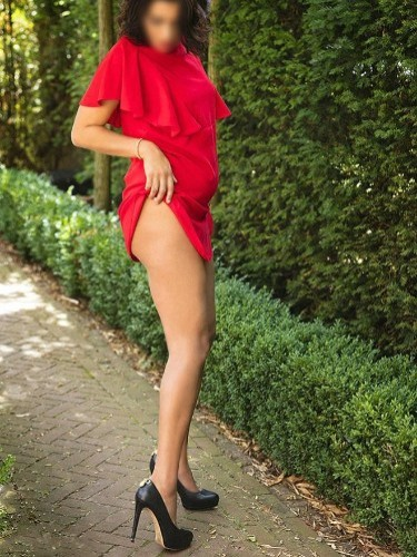 Sex advertentie van Yara in Eindhoven - Foto: 4